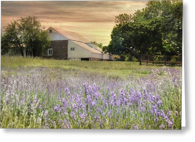 Bucks County Farm Greeting Cards - Carousel Lavender Farm Greeting Card by Lori Deiter