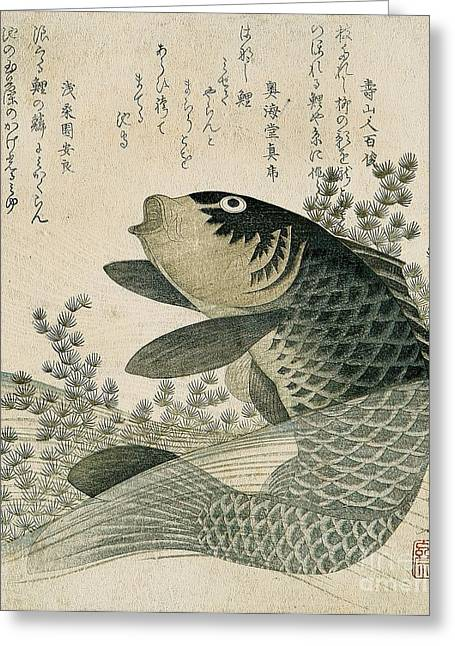 Carp Among Pond Plants Greeting Card by Ryuryukyo Shinsai
