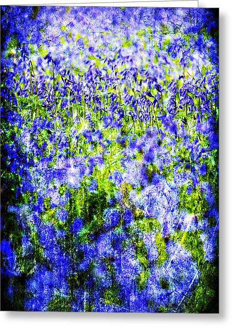 Texture Flower Greeting Cards - Carpet Of Blue Greeting Card by Meirion Matthias