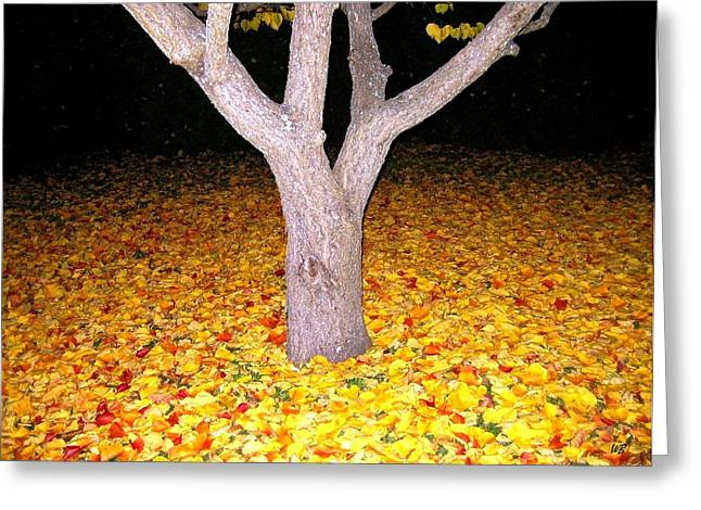 Apricot Tree Greeting Cards - Carpet Of Leaves Greeting Card by Will Borden