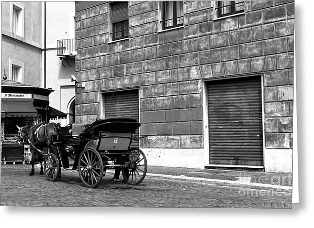 Horse And Buggy Greeting Cards - Carriage in Piazza Navona Greeting Card by John Rizzuto