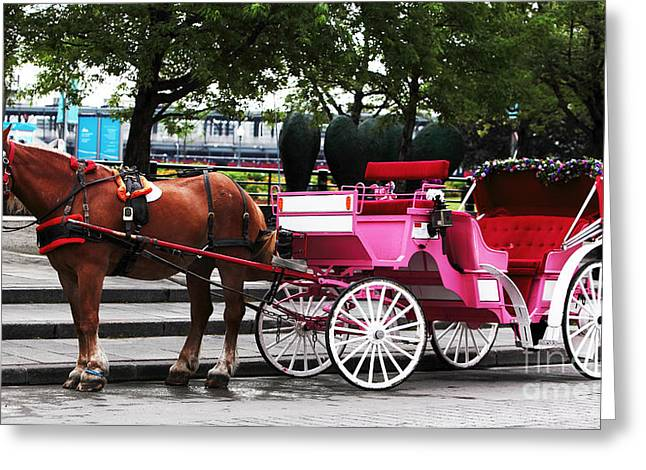 Carriage Ride In Montreal Greeting Card by John Rizzuto