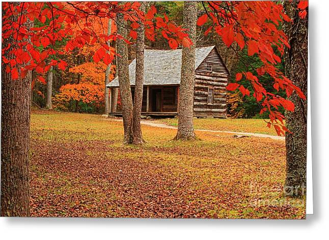 Log Cabins Greeting Cards - Carter Sheilds Cabin Greeting Card by Geraldine DeBoer