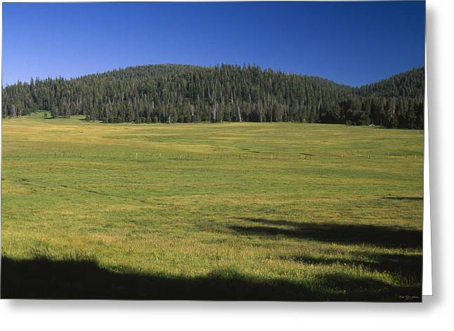 Casa Vieja Meadow - Golden Trout Wilderness Greeting Card by Soli Deo Gloria Wilderness And Wildlife Photography