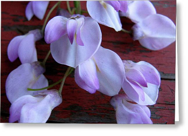 Striking Images Mixed Media Greeting Cards - Cascade Delicately  Greeting Card by Debra     Vatalaro