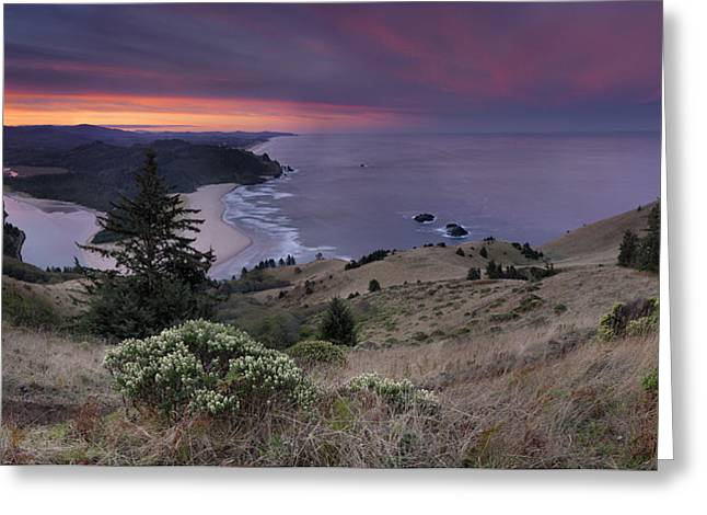 Cascade Head Scenic Area Greeting Card by Leland D Howard