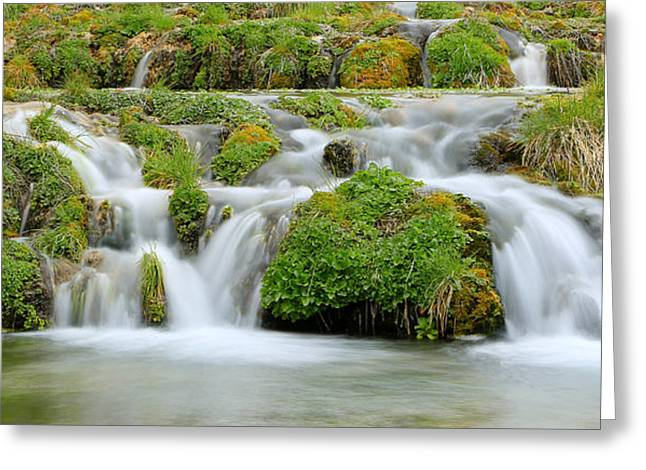 Lush Green Greeting Cards - Cascade Springs Greeting Card by Johnny Adolphson