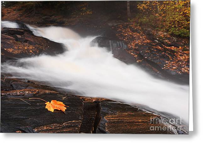 Canadian Nature Scenery Greeting Cards - Cascade Waterfall Fall Nature Scenery Greeting Card by Oleksiy Maksymenko