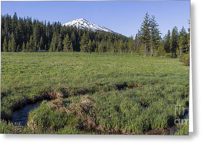 Sunriver Greeting Cards - Cascades Meadow Greeting Card by Twenty Two North Photography