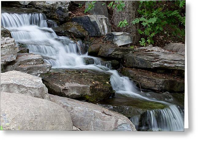 Beautiful Creek Greeting Cards - Cascading Greeting Card by Fran Riley
