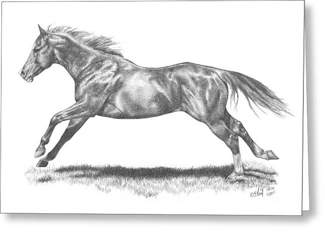 Race Horse Greeting Cards - Cash Greeting Card by Sabrina  Thiel