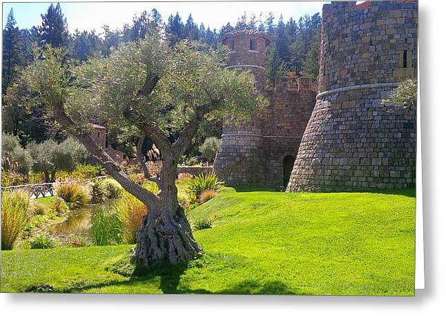 Wine Tour Greeting Cards - Castello Di Amorosa Greeting Card by Misti Algeo