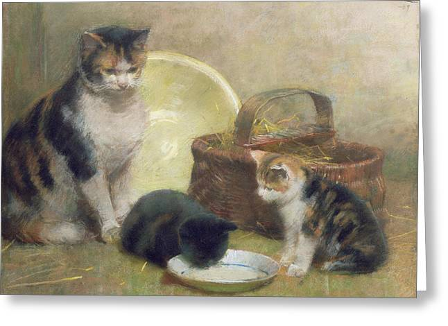 Cat And Kittens Greeting Card by Walter Frederick Osborne