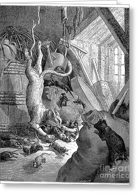 Dore Greeting Cards - Cat And The Old Rat, 1868 Greeting Card by Granger