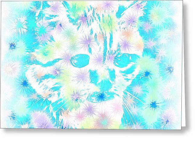 Occasion Greeting Cards - Cat astrologer Greeting Card by Sergey Lukashin
