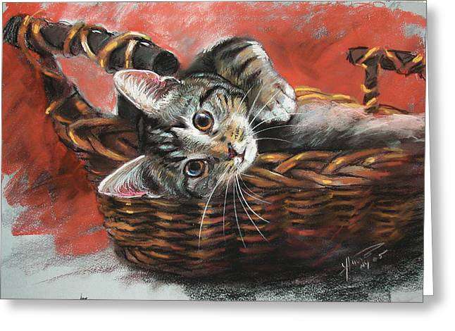Basket Pastels Greeting Cards - Cat in the basket Greeting Card by Ylli Haruni