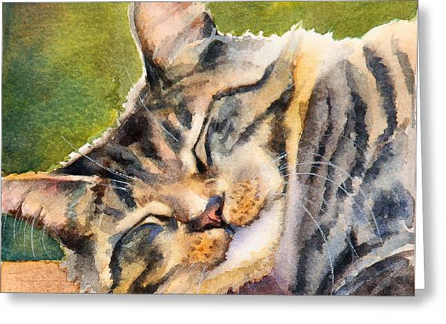 Cat Nap Greeting Card by BONNIE RINIER