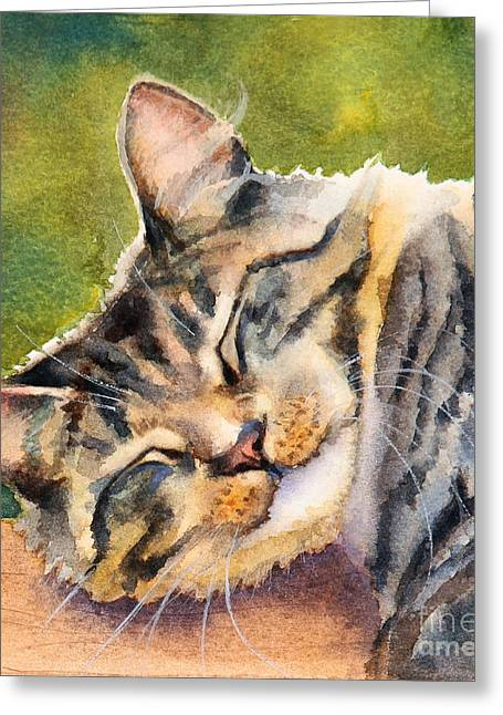 Domestic Cat Greeting Cards - Cat Nap Greeting Card by Bonnie Rinier