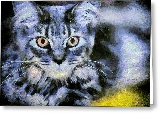 Cat Portrait Greeting Card by Akos Horvath