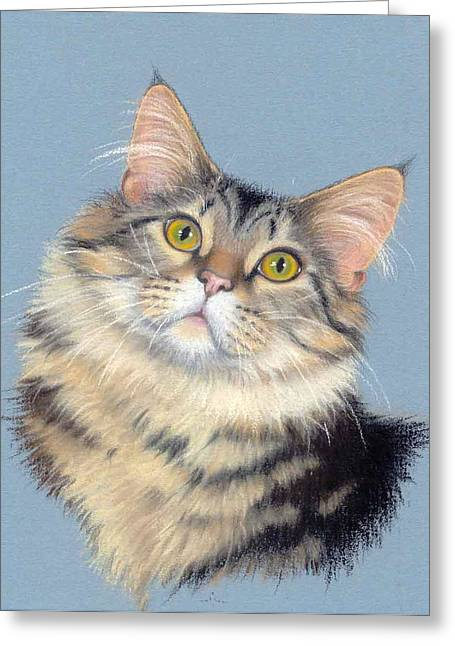 Domestic Pastels Greeting Cards - Cat Portrait Greeting Card by Deb Owens-Lowe