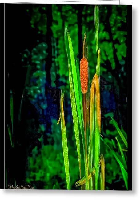 Cat Tails  On Miller Pond Boardwalk  Greeting Card by LeeAnn McLaneGoetz McLaneGoetzStudioLLCcom