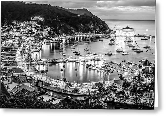 Theater Town Greeting Cards - Catalina Island Avalon Bay Black and White Picture Greeting Card by Paul Velgos