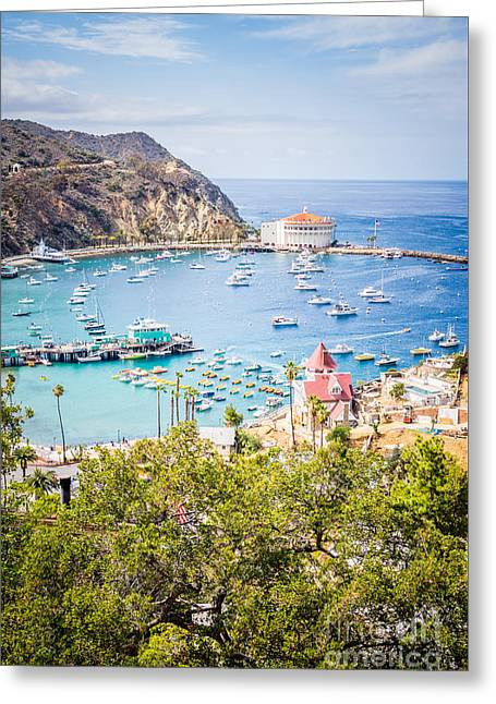 Casino Pier Greeting Cards - Catalina Island Avalon Bay Vertical Photo Greeting Card by Paul Velgos