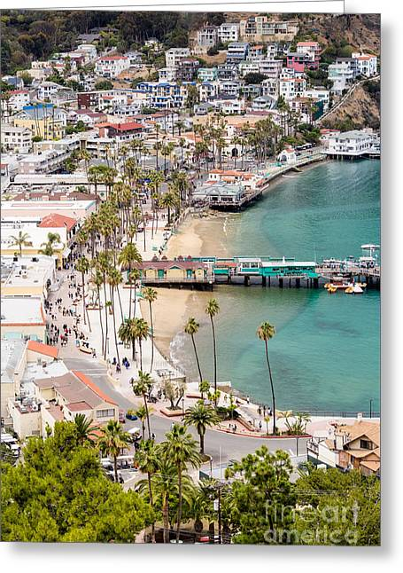 Catalina Island Avalon Waterfront Aerial Photo Greeting Card by Paul Velgos