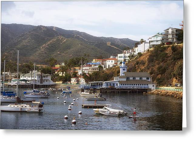 Docked Sailboats Photographs Greeting Cards - Catalina Island Beauty Greeting Card by Mountain Dreams