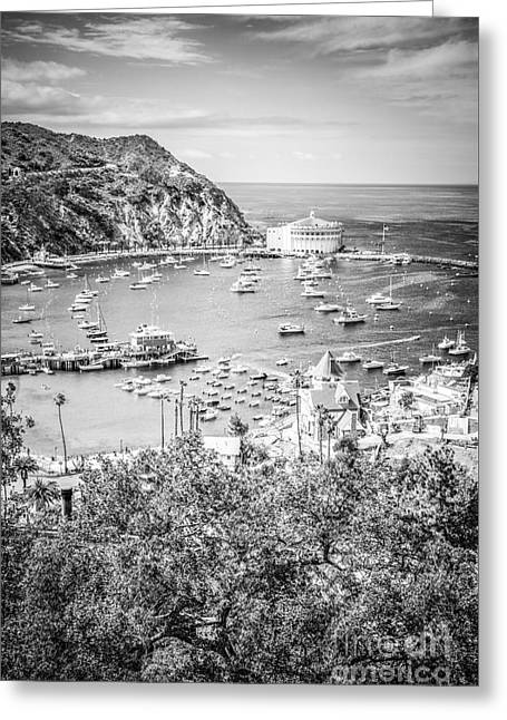 Catalina Island Vertical Black And White Photo Greeting Card by Paul Velgos