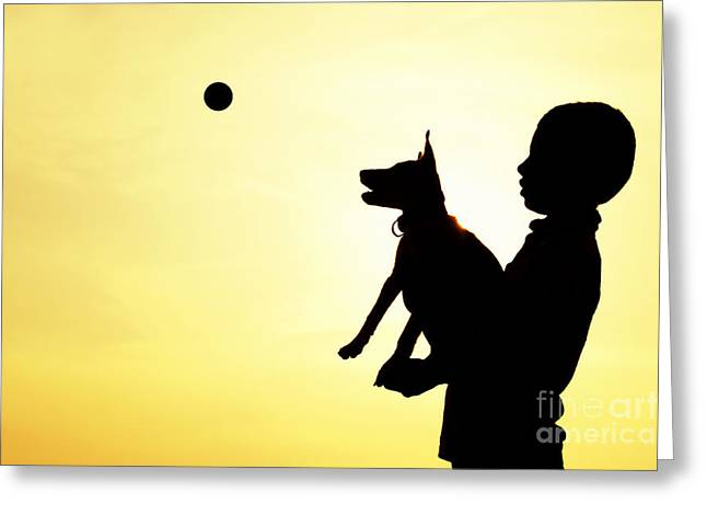 Dog Playing Ball Greeting Cards - Catch Greeting Card by Tim Gainey