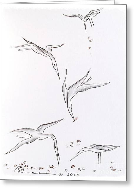 Swooping Drawings Greeting Cards - Catching the Crumbs Greeting Card by Barbara Chase