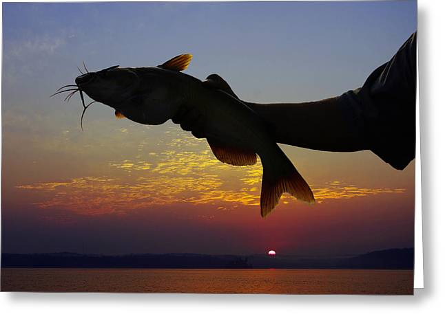 Catfish At Sunrise Greeting Card by Ron Kruger