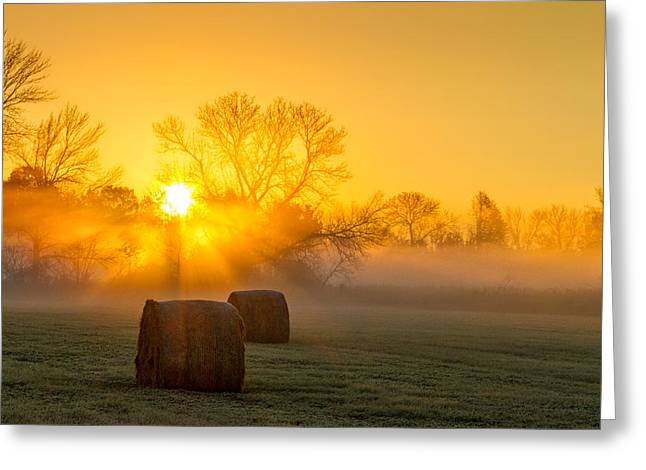 Hay Bales Greeting Cards - Catching the Rays Greeting Card by Julie Heidelberger