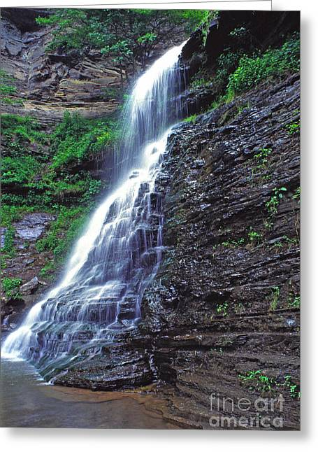 Cathedral Falls In Spring Greeting Card by Thomas R Fletcher