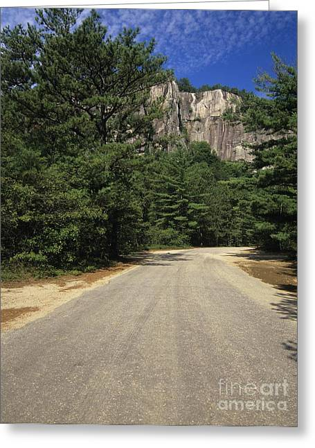 Ledge Photographs Greeting Cards - Cathedral Ledge State Park - Conway New Hampshire USA Greeting Card by Erin Paul Donovan