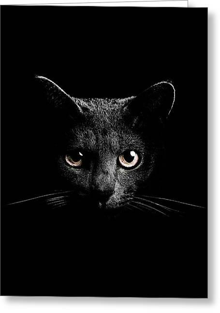 Cats Eyes Greeting Card by Mark Rogan