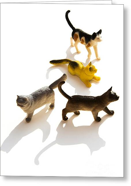 Figurines Greeting Cards - Cats figurines Greeting Card by Bernard Jaubert