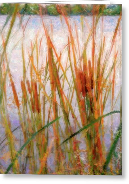 Plant Life Digital Greeting Cards - Cattails By The Lake Greeting Card by Betty LaRue