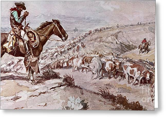 Herders Greeting Cards - Cattle Drive Greeting Card by Charles Marion Russell