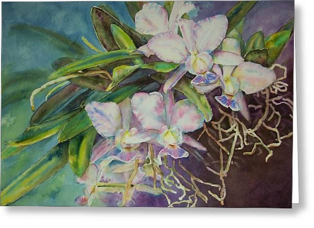 Cattleya Paintings Greeting Cards - Cattleya Walkeriana Greeting Card by Phyllis Bleau