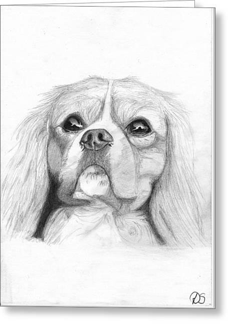 Cavalier King Charles Spaniel 2 Greeting Card by David Smith
