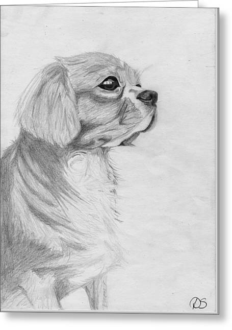Cavalier Greeting Cards - Cavalier King Charles Spaniel 3 Greeting Card by David Smith