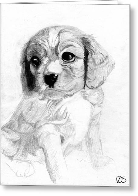 Puppy Greeting Cards - Cavalier King Charles Spaniel Puppy 2 Greeting Card by David Smith