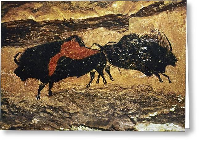Primitive Greeting Cards - Cave Art: Bison Greeting Card by Granger