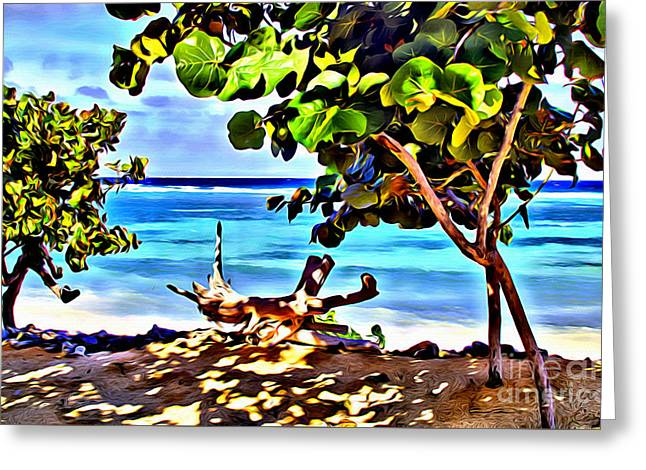 Cayman Cove Greeting Card by Carey Chen