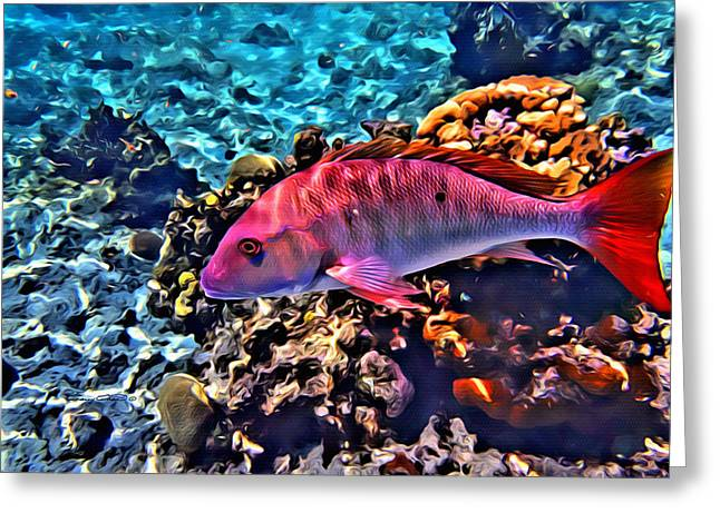 Mutton Snapper Greeting Cards - Cayman Snapper Greeting Card by Anthony C Chen