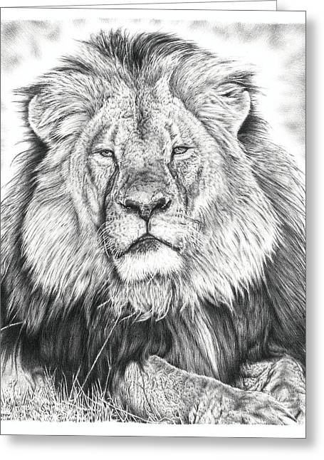 Wild Life Drawings Greeting Cards - Cecil The Lion  Greeting Card by Heidi Vormer