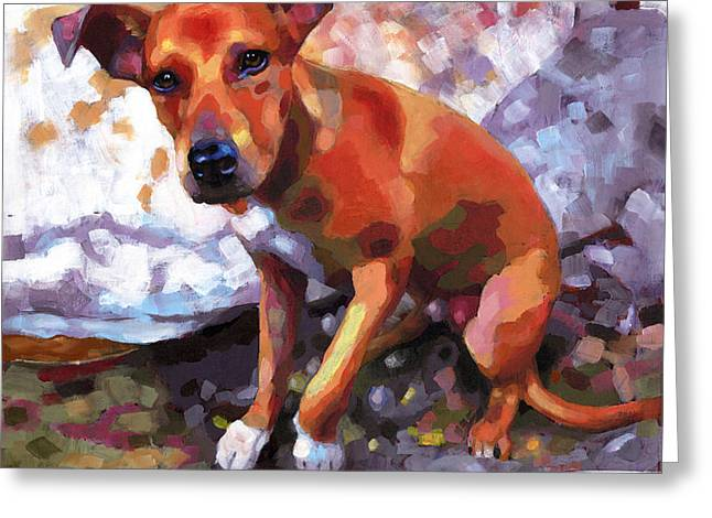 Best Friend Greeting Cards - Cedar at the River Greeting Card by Douglas Simonson