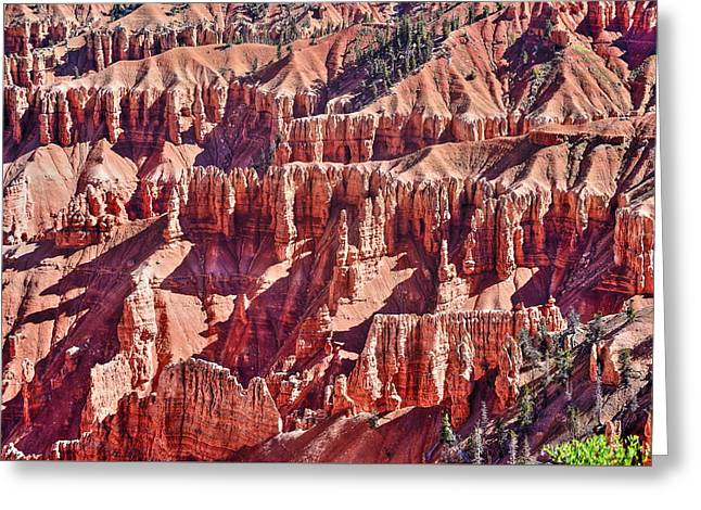 Southern Utah Greeting Cards - Cedar Breaks Red Rocks Greeting Card by Richard Cheski